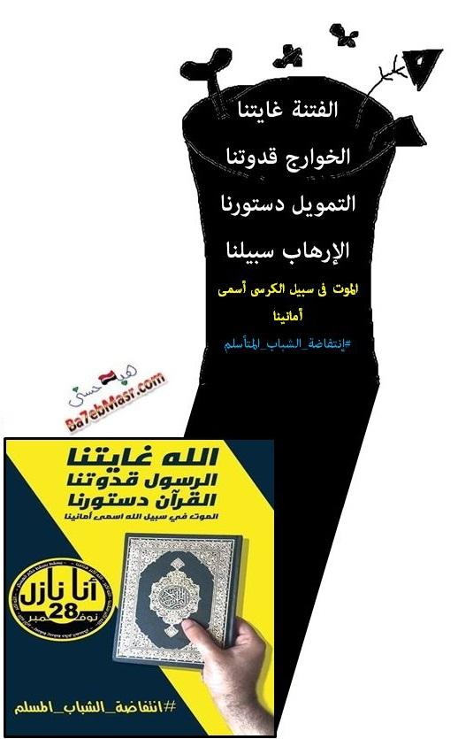 كاريكاتير-الثورة-الإسلامية-مصر-28-نوفمبر-2014-هبة-حسنى